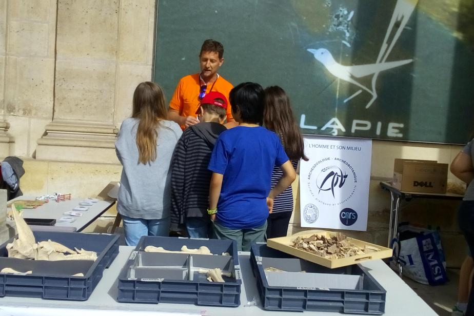 jna_2017_archive_nationale_stand_darcheozoologie.jpg